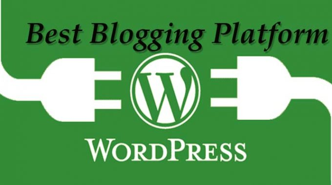 Which is Best Blogging Platform Free